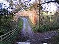 Lane to Underleigh Farm - geograph.org.uk - 1584346.jpg