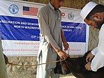 Large animals receive vaccination from Foot and Mouth Disease under the USAID and FAO project. (16075662791).jpg