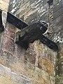 Large gargoyle on Rosslyn Chapel, Scotland.jpg