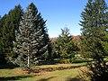 Lasdon Park and Arboretum, Somers, NY - IMG 1475.jpg