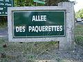 Le Touquet-Paris-Plage (Allée des Pâquerettes).JPG