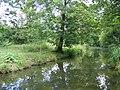 Le ruisseau du bois de Vincennes.JPG