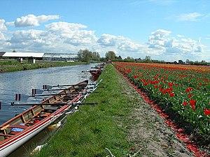 Leidsevaart - Leidsevaart near Hillegom.