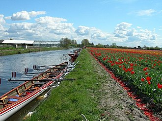 Nautical tourism - Rowing water tourists in Hillegomin April, when the tulip fields are in bloom.