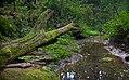 Leo Petroglyph State Park (9683724502).jpg