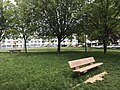 Les Folliets à Saint-Maurice-de-Beynost - 7.JPG