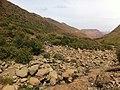 Letele Pass - panoramio (17).jpg