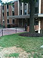 Linthicum Hall - panoramio.jpg