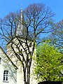 Lippstadt - Kath. Pfarrkirche St. Nicolai - panoramio.jpg