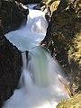 Little Qualicum Falls Provincial Park.jpg