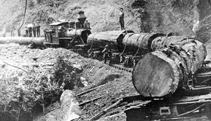 Oregon and California Railroad Revested Lands - Logging in Oregon, 1910