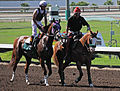Los Alamitos Sept 2014 IMG 6765 (15131238048).jpg