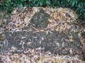 Lothar von Trotha, Grabmal auf dem Poppelsdorfer Friedhof.jpg