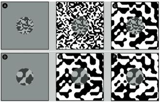 Chubb illusion - Figure 3: The Chubb Illusion