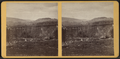Lyon Brook Bridge, Chenango Co., N.Y, from Robert N. Dennis collection of stereoscopic views.png