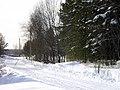 Lyovintsy, Kirovskaya oblast', Russia, 612079 - panoramio (42).jpg