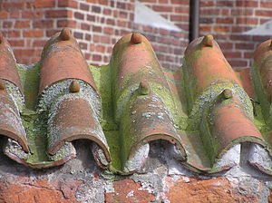 Monk and Nun - Another form of Monk and Nun roofing on a church in Kalundborg