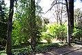 MADRID A.V.U. JARDIN DEL CAMPO DEL MORO - panoramio - Concepcion AMAT ORTA… (9).jpg