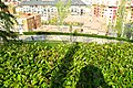 MADRID VERDE JARDIN-MIRADOR DE LAS VISTILLAS VISITA COMENTADA - panoramio - Concepcion AMAT ORTA… (6).jpg