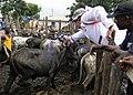 MEDFLAG 11, Ghana, July 2011 (5963616034).jpg