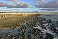 MK-08240 Hamelin Pool Stromatolites.jpg