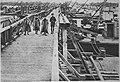 M 106 16 pont austro-allemand sur Danube à Semandria.jpg