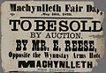 Machynlleth Fair Day 1879 To Be Sold by Auction.jpg