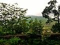 Madri, Madhya Pradesh, India - panoramio (9).jpg