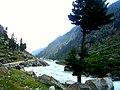 Mahudand, Kalam, Swat, KPK, Pakistan 05.jpg