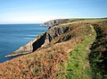 Majestic views from coastal path - geograph.org.uk - 581530.jpg