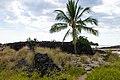 Maliu Point Honokohau bay Park Big island, Hawaii (32405258788).jpg