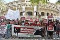 Mallorca, sin sangre en las plazas.jpg