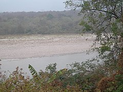Manas Wildlife Sanctuary-118452.jpg