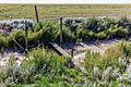 Markering van spoorlijn die is verdwenen onder een dikke laag slik. Locatie, Noarderleech Provincie Friesland 02.jpg