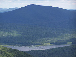 Cedar River (New York) - Cedar River from the Wakley Mountain Fire Tower