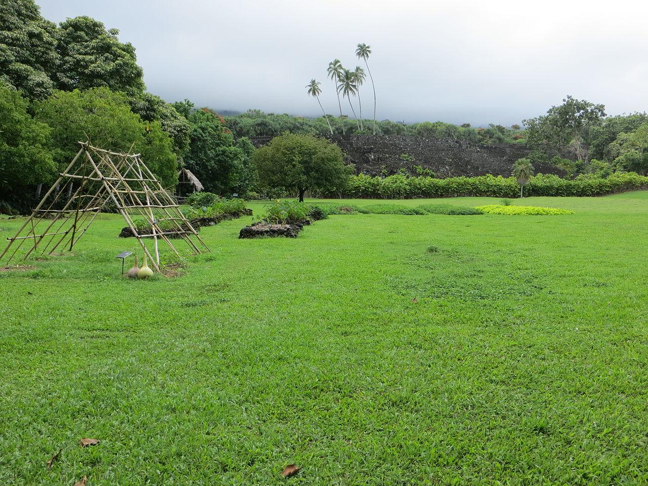 File Maui Piilanihale Heiau Gardens Jpg Wikipedia