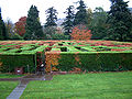 Maze Traquair House 029.jpg