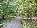 Meijer Gardens October 2014 22 (Woodland Shade Garden).jpg