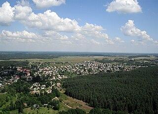 Merkinė Town in Dzūkija, Lithuania