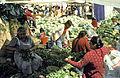 Mexico1980-207 hg.jpg