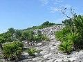 Mexico yucatan - panoramio - brunobarbato (41).jpg