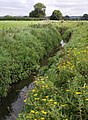 Mill Stream - geograph.org.uk - 542799.jpg