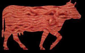 English: Beef