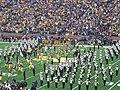Minnesota vs. Michigan 2011 02 (Go Blue banner).jpg