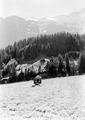 Mitrailleureailleur beim Gefechtsschiessen in Grindelwald - CH-BAR - 3240863.tif