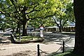 Miyazaki prefectural route 11 Kusunoki Namiki.jpg