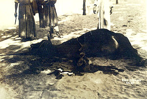 Dhabihah - A ritual slaughter in Esna, Egypt in 1926.