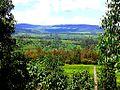 Mogobich Valley, Nandi Hills.jpg