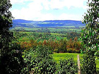 Nandi County County in Kenya