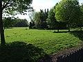 Moneytree Clump - geograph.org.uk - 439899.jpg
